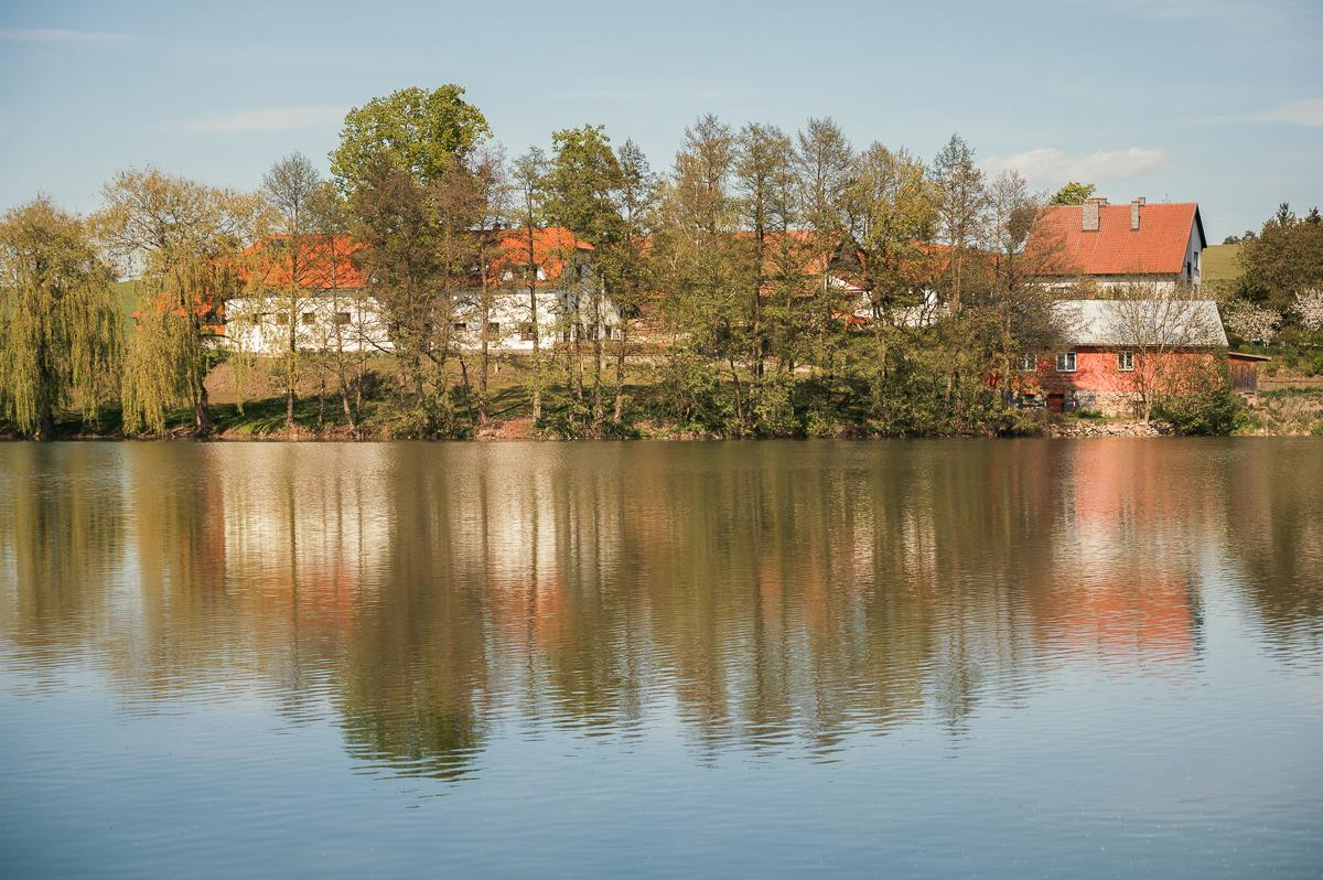 Mezibořský rybník