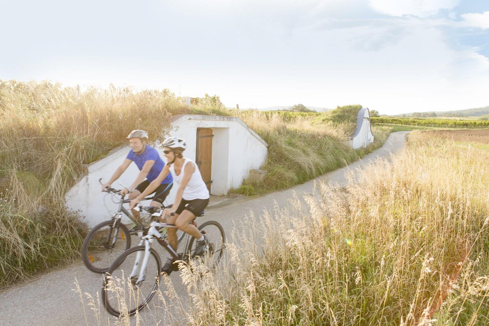 езда на велосипеде в Нижней Австрии в Вайнфиртель; (c) Niederösterreich Werbung / Astrid Bartl