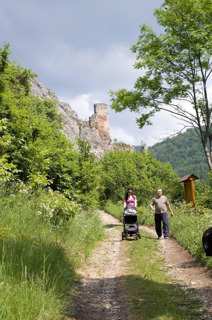 zřícenina hradu Lednica