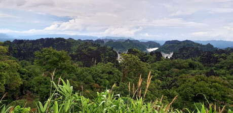 Limestone Forest Viewpoint