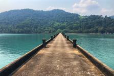 70 % ostrova je pokryto deštným pralesem