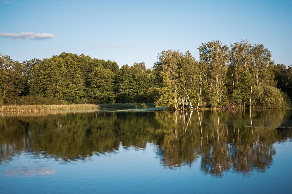 Тршебонь окружена прудами