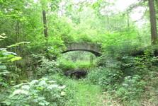заросший мост в  долине Драчице