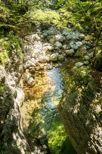 riečka Savica