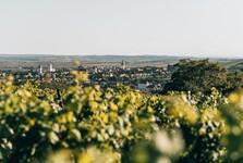 Retz; (c) Niederösterreich Werbung / Romeo Felsenreich