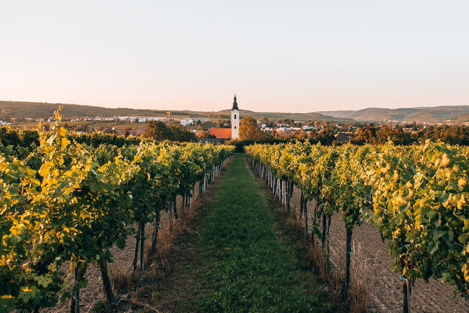 Kamptal; (c) Niederösterreich Werbung / Romeo Felsenreich