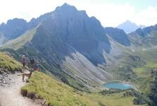 cesta k Lache a vrchol Lachenspitze