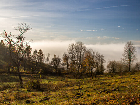 Hadviga (Brieštie) - okolie