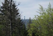 výhled na Prahu z lesní cesty Hořovská