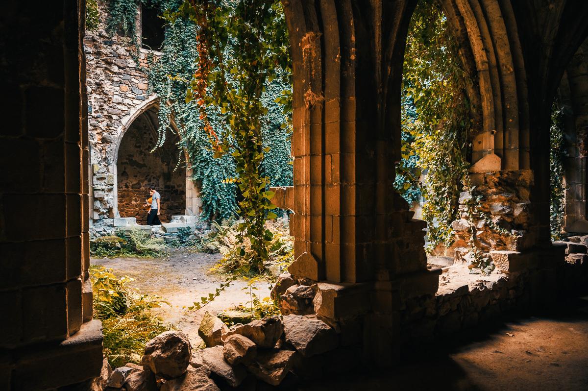 Райский двор