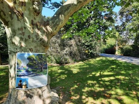 Malinovo - anglický park (umenie)