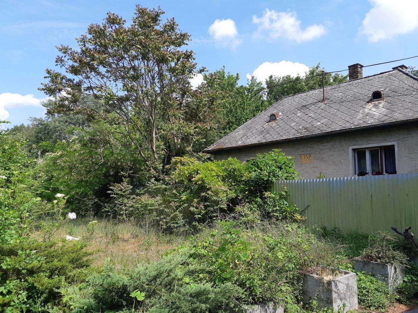 дом лесника Гейзы Драждяка