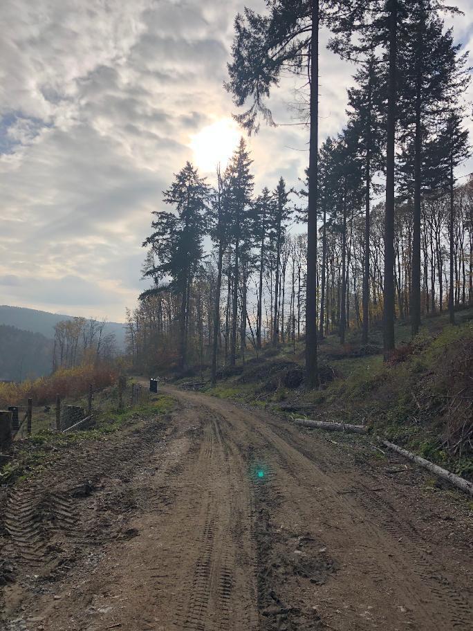 lesní cesta asi kilometr nad Luhačovicemi