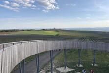 krásný výhled na moravské vinohrady a Vrbici