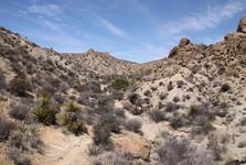okolní krajina kolem Palm Springs