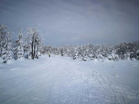 Krušnohorská lyžiarska magistrála