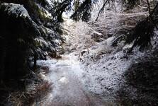 зимний пейзаж вокруг Черной Десны
