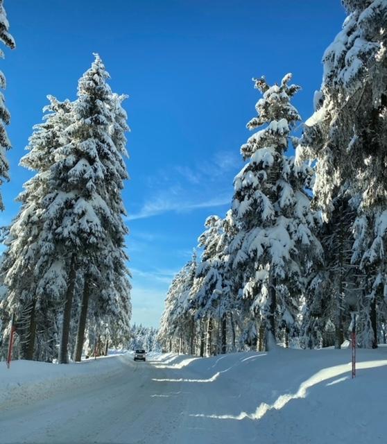 zasněžená krajina Krušných hor
