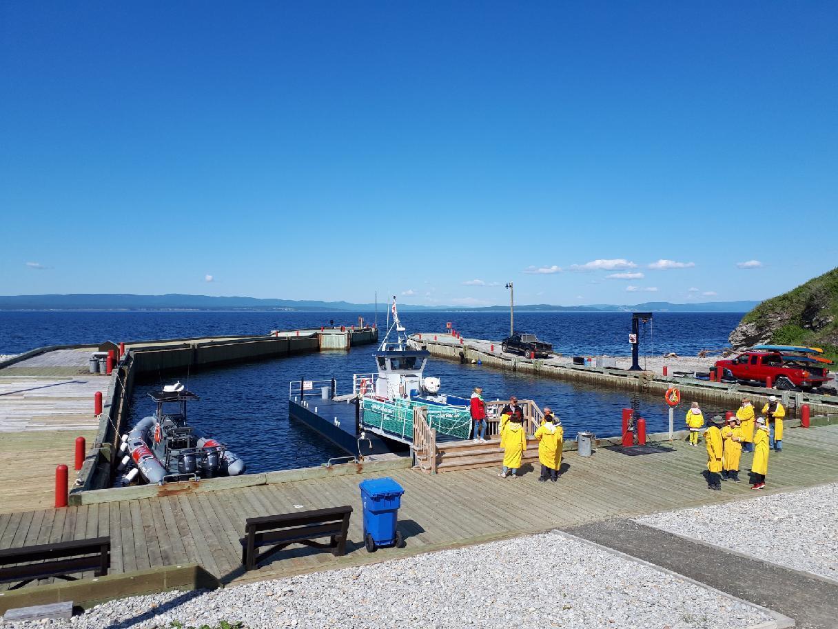 přístav, od kterého se odplouvá pozorovat velryby