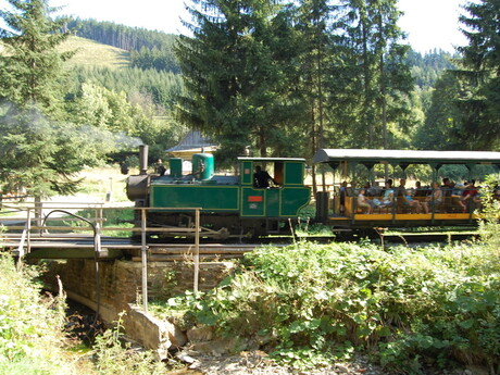 Lesná úvraťová železnica