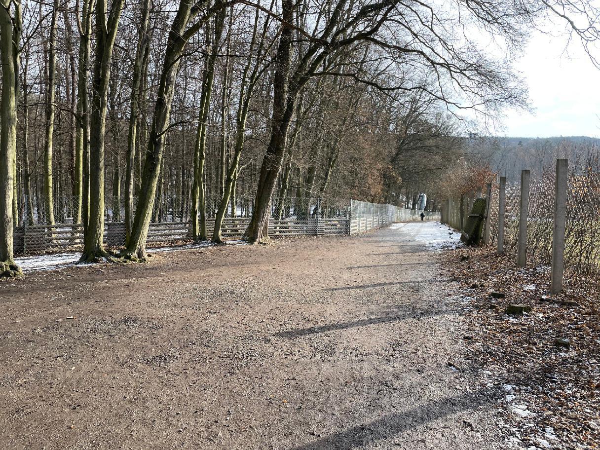 procházka oborou