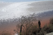 Atanasovské jezero