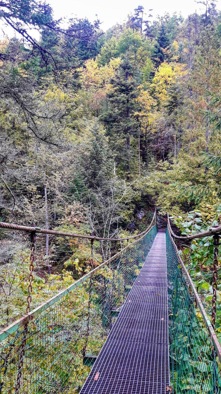 Průlom Hornádu, Slovenský ráj (lanový most)