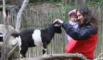 kontaktní zoo v dětském koutku