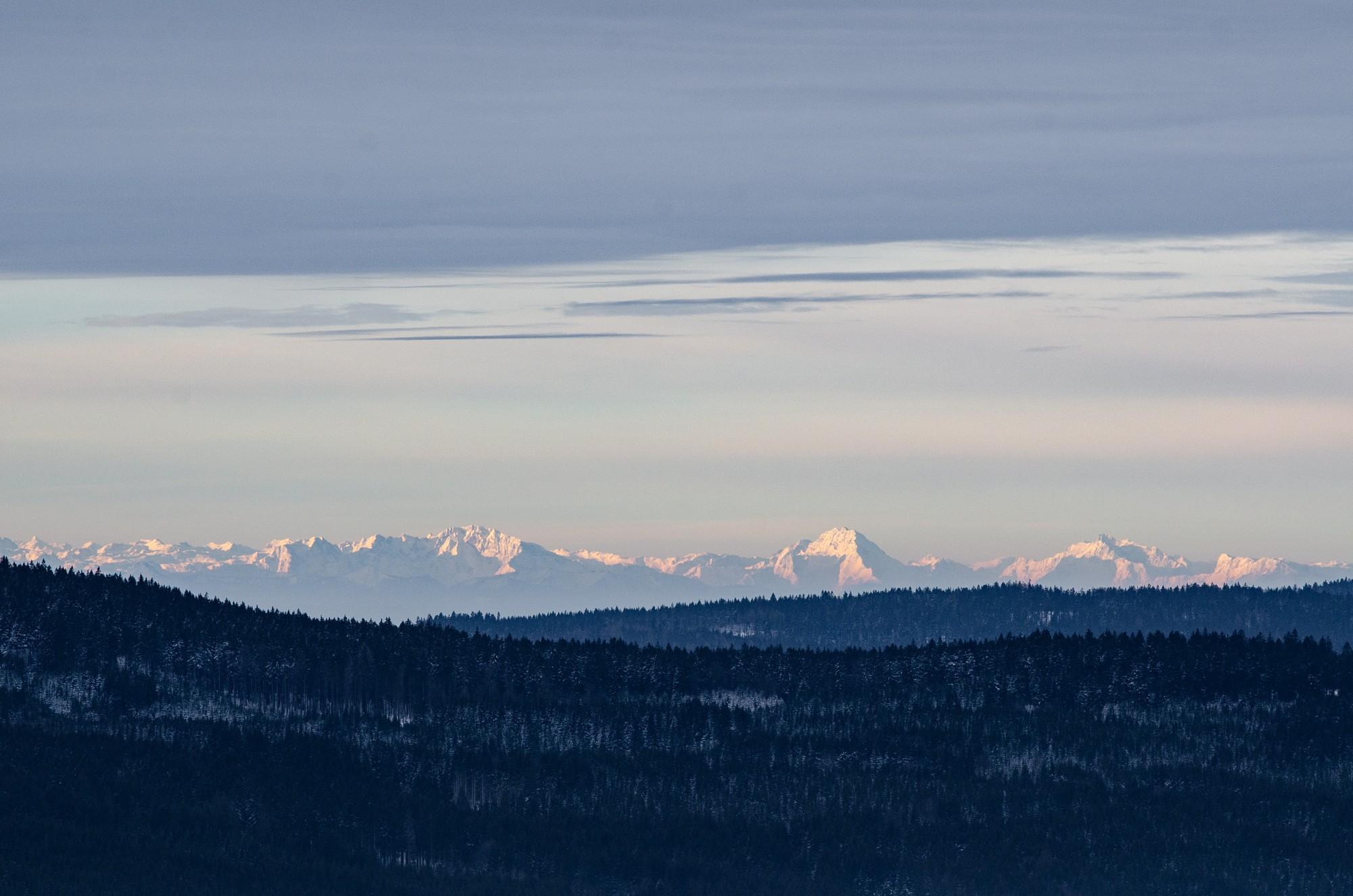 Alpy z Cestičky korunami stromov