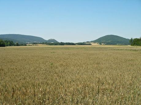 """Pohled na """"Hainburské kopce"""""""