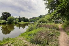 the Sazava River