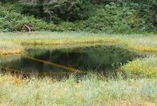 Пухмаерово озеро