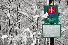 Národná prírodná rezervácia Roštún