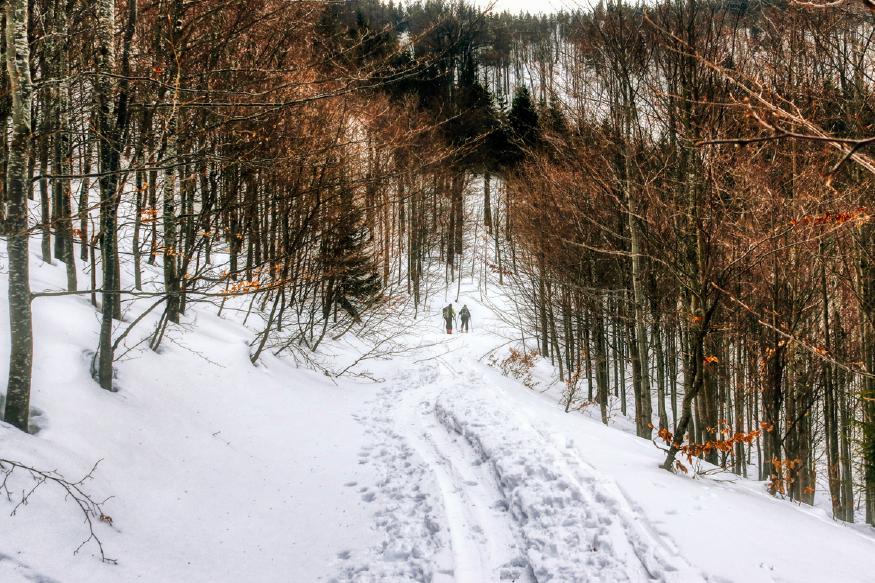 горнолыжные трассы на лыжах для ски-альпинизма