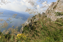 výhled na jezero Traunsee