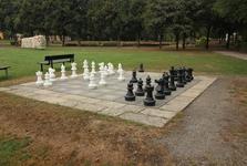 шахматная площадка