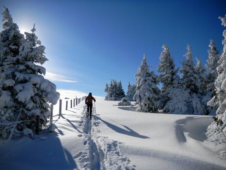 Верхняя Штирия, (c) Skitour_Steininger