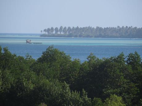 modrá mozaika v národním parku Karimunjawa (možnost ubytování je i v těchto domkách na moři)