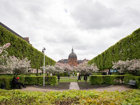 park v Kodani