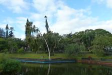 Madeira, park Santa Catarina