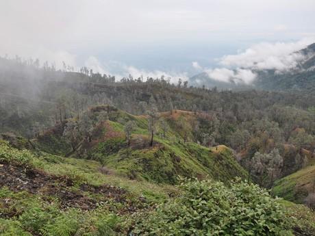volcanic relief