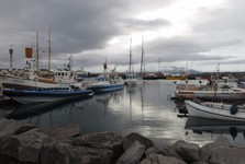 the port of Husavík