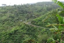 krajina severního Bali