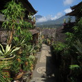 Bali - pohled skrz The Tranquil palace