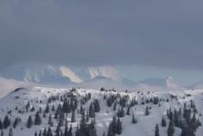 великаны в окрестностях, частично также в тумане