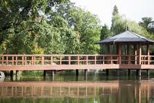 Japanese garden in Szczytnicki