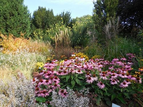 Ботанический сад г. Праги