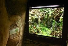 Fata Morgana greenhouse