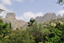 Santiago island, a view from a botanical garden