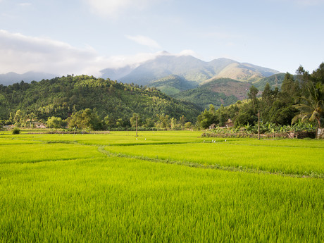 mountains, Da Nang